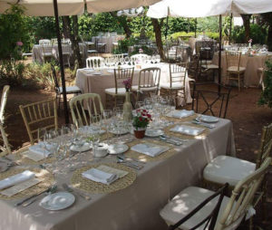 Catálogo de sillas y mesas para alquiler